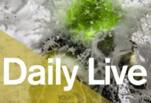 Daily Live – 1300 UTC Monday 12 February | Volvo Ocean Race