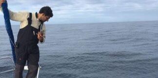 Comandante gaudério observa golfinho na proa do veleiro Gulliver (Flo-RGr)...