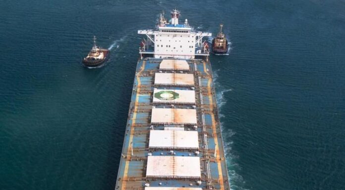 Bulk Carrier | New South Wales
