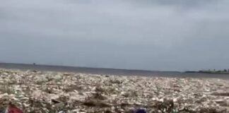 Assistir a Each year, humans dump 13 million metric tons of plastic into the ocean