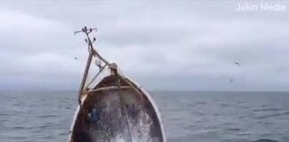 Assistir a Fishing boat sunk in minutes