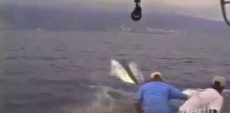 Assistir a Fishing gone wrong!