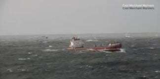 a Bulk Carrier Rolling and Pitching