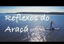 Reflexos do Araçá