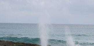 Isla Cozumel ! Paraíso para mergulhadores